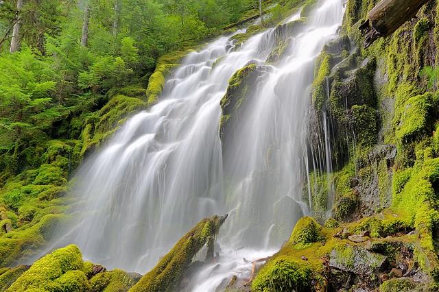 Lower Proxy Falls, Oregon