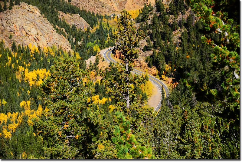 Fall colors, Mount Evans Scenic Byway, Colorado (36)
