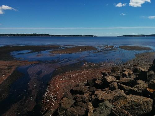 Low tide, Charlottetown Harbour #pei #princeedwardisland #charlottetown #charlottetownharbour #latergram