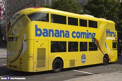 Wrightbus NRM NBFL - LTZ 1306 - LT306 - Chiquita Bananas - Deptford Bridge 453 - Go Ahead London - London 2017 - Steven Gray - IMG_8664