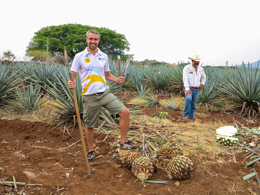 Pueblo Mágico de Tequila