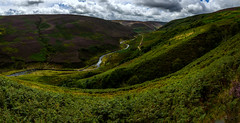 The Trough of Bowland
