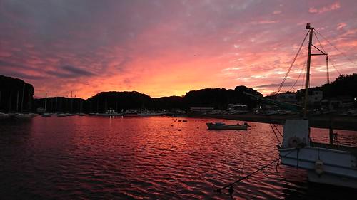 japan kanagawa nature landscape koajirobay 小網代湾 sunrise sonyxperia