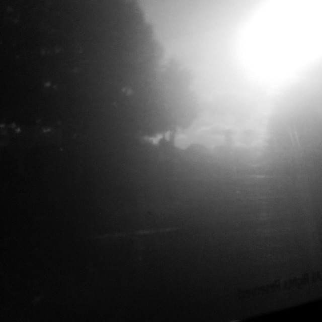 Dreamworld through the train window