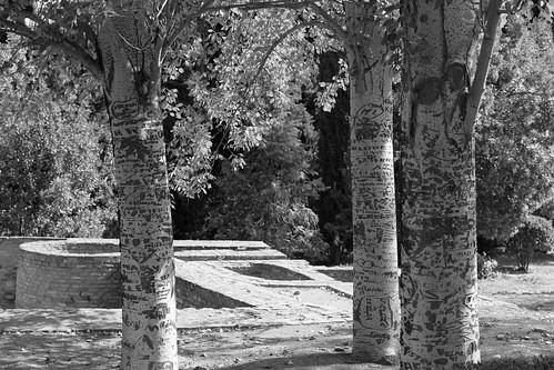 Granada_2017_18