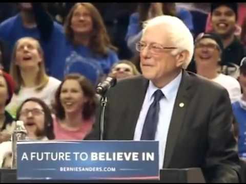 Passarinho parece ouvir candidato Bernie Sanders nos EUA