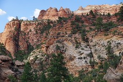 Zion National Park (8)