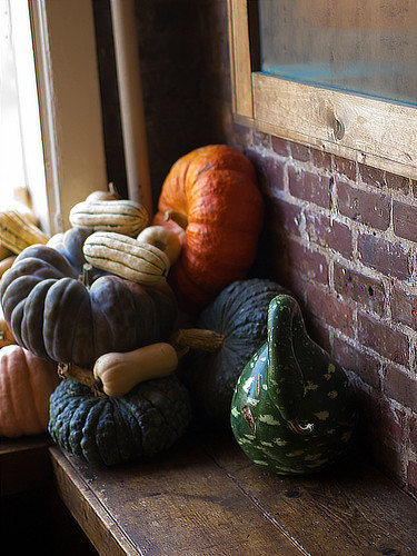 Pumpkins on a sill (02)