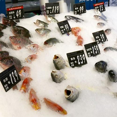 氷から頭だけ突き出た、魚売り場の魚たち。 #家楽福 #カルフール #carrefour #スーパーマーケット #台北 #台湾 #taipei #taiwan #travel #trip #旅行 #旅