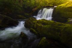 Rhythm of Flowing Spring - 1239