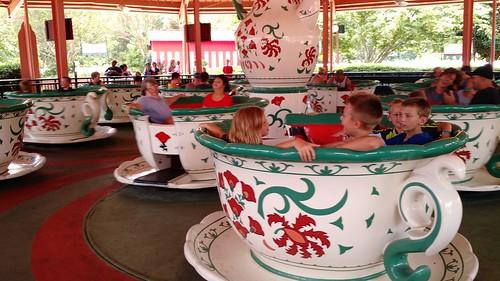 July 27 2017 Clark birthday Busch Gardens (3)