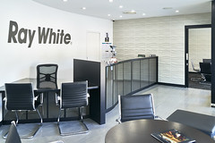 ray white real estate office fitout