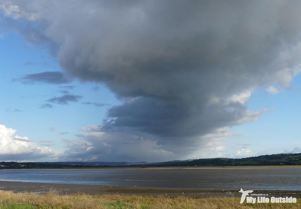 P1120148 - Burry Inlet