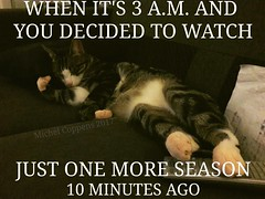We all know the struggle 😉 #funny #joke #bingewatching #netflixandchill #cat #catsofinstagram #cats #tv #series #season #meme #sleep #cute #struggle #cuteanimal #cutecat #kitty #remote #sleepingcat #remotecontrol #sleep #haha #netflix #couchpotato #a