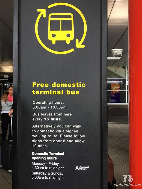 Cách đi xe buýt từ sân bay quốc tế đến nội địa ở Auckland, New Zealand