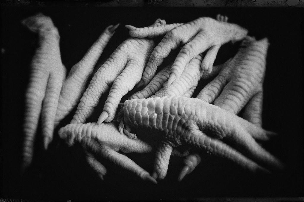 Chicken fingers-11093