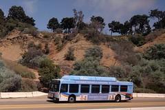 OCTA Bus