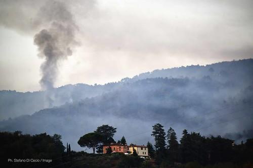 Gli interventi di oggi sulle colline di Casalguidi foto di Stefano Di Cecio