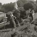 1950 Lindner Kr