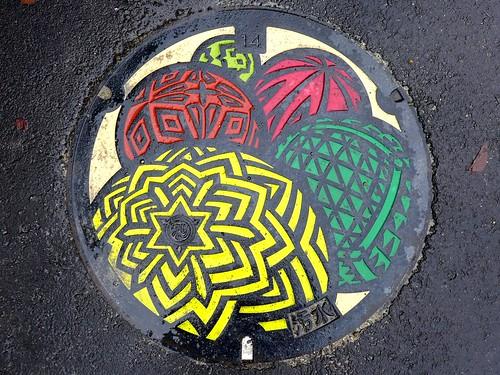 Wakayama city Wakayama pref, manhole cover 3 (和歌山県和歌山市のマンホール3)
