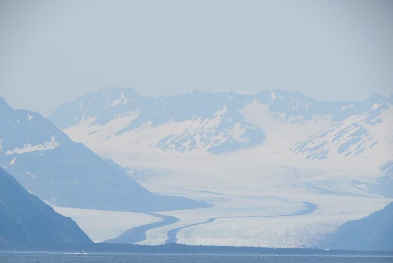 Bear Glacier on our way back