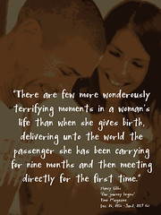 """Quotation: """"There are few more wonderously terrifying moments in a woman's life than when she gives birth, delivering unto the world the passenger she has been carrying for nine months and then meeting directly for the first time."""""""