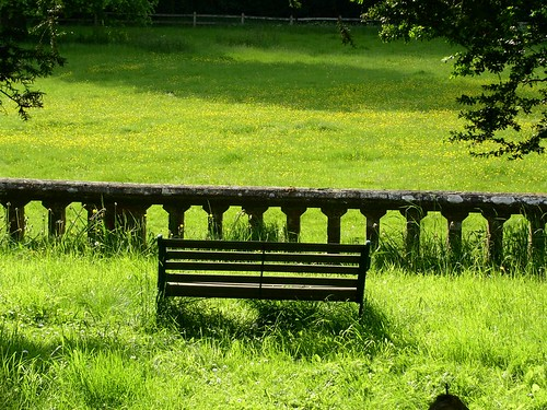 View from Chawton churchyard in May