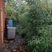 Yard and Garden Nov.