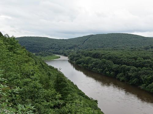 landscape scenery tree water river