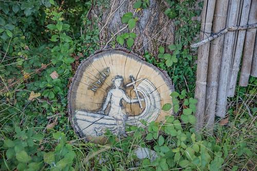 03-Peinture sur coupe de tronc