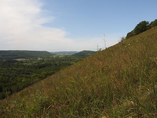 Mound Prairie Scientific and Natural Area