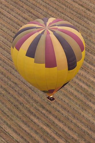 Hunter Valley Balloon Fiesta 30