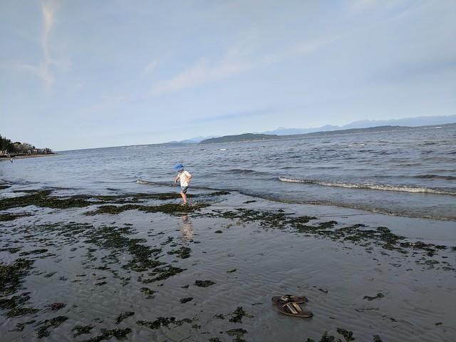 Alki Beach 2017 - 2