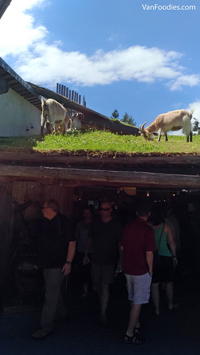 Old Country Market in Coombs - Goats on the Roof