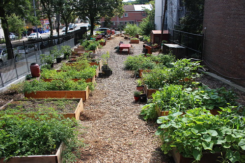 Jackson Forest Community Garden Slideshow