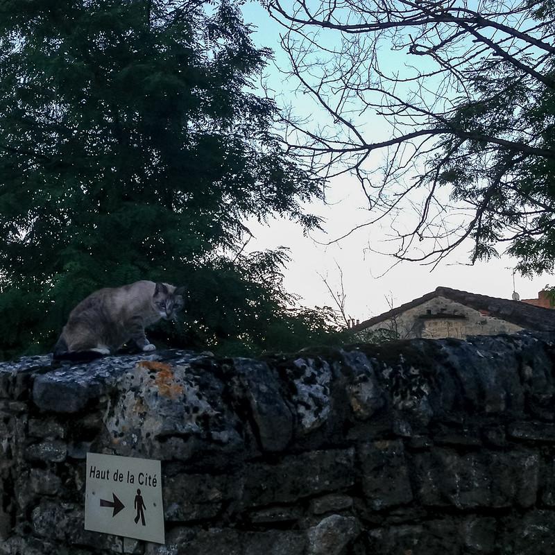 occitanie-delle-5594