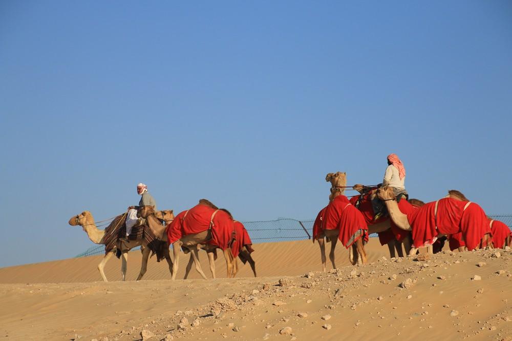 UAE_081