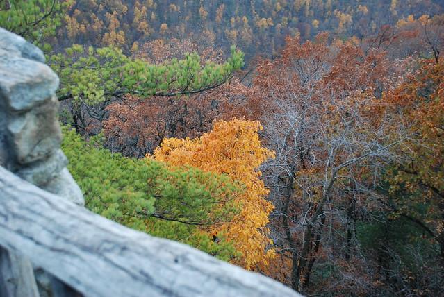 Fall colors at Coopers, Nikon D80, AF-S DX Zoom-Nikkor 18-135mm f/3.5-5.6G IF-ED