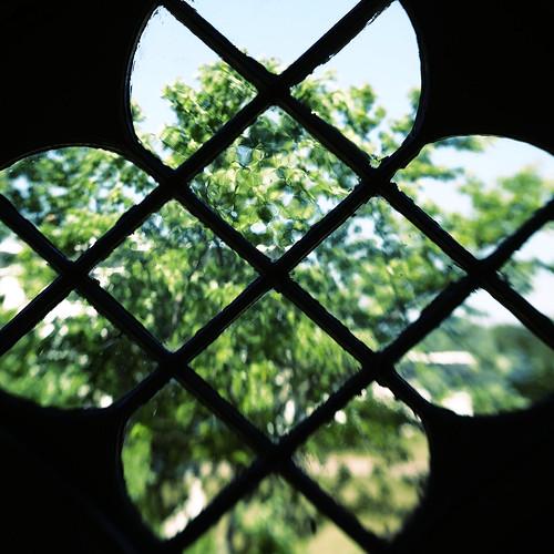 lensbabyspark lensbaby lensbabyglassdoubletoptic saintaugustines church romancatholic rustico window tree