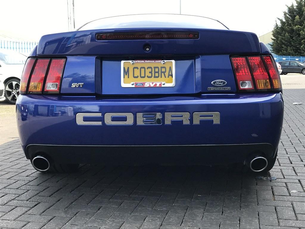 Terminator Cobra For Sale Near Me