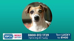 RSPCA Lottery TV ad