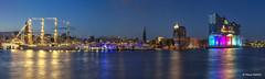 Hafenpanorama - 04081701
