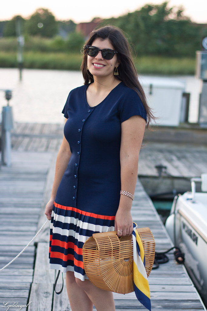 striped drop waist dress, bamboo bag, dog-7