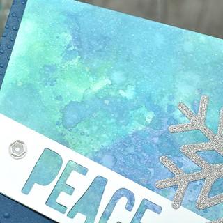 FMS Peace 2