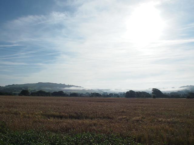 NCN2 Trip - Morning mist