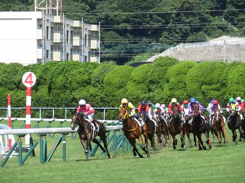 小倉競馬場のレースの模様