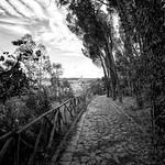 downhill - https://www.flickr.com/people/26272797@N02/