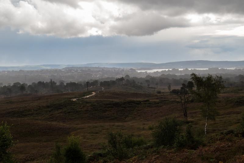 A misty view across the heath