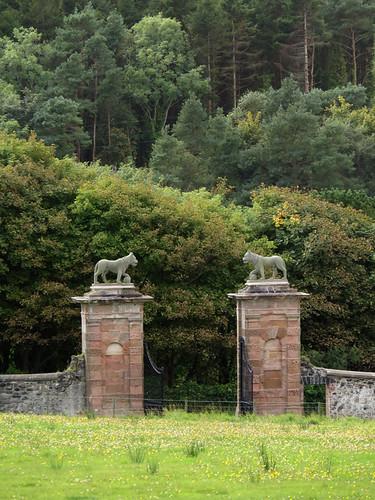 Lion gateposts at Downhill Demesne in Ireland, UK