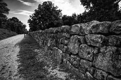 Sunken Road - Fredericksburg VA